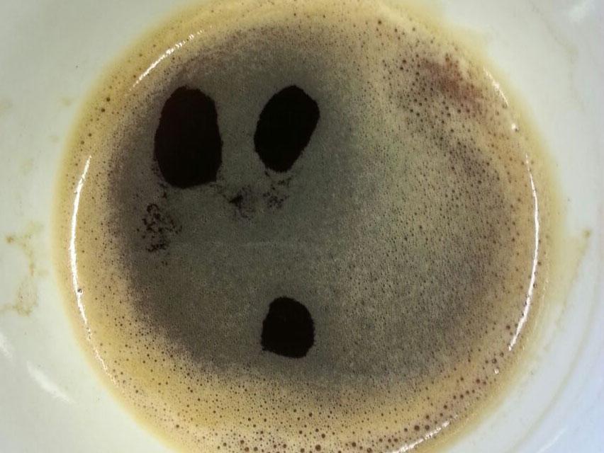 141031-erschrockener-kaffee